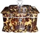 An English Regency 19th Century Tortoiseshell Tea Caddy