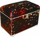 A 19th Century English Regency Tortoise Shell Tea Caddy